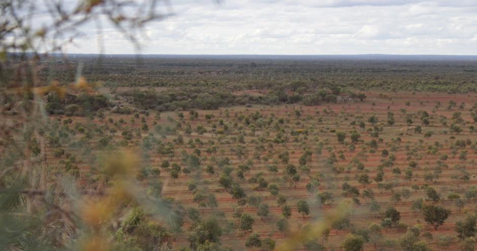 Australia Biodiversity