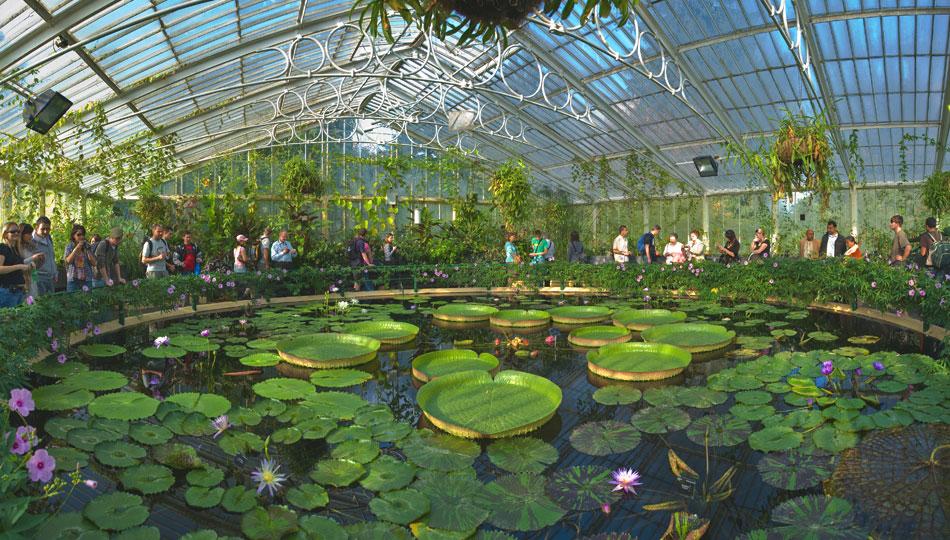 Interns at Syndey Botanical Garden