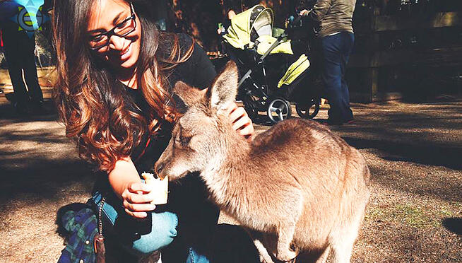 intern feeding kangaroo