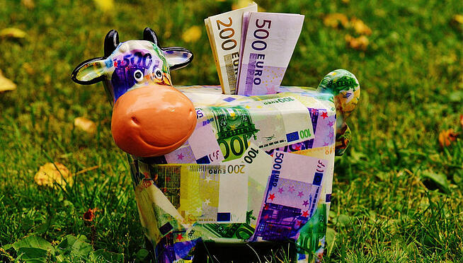 money-cow
