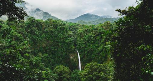 Environmental Internship in Costa Rica