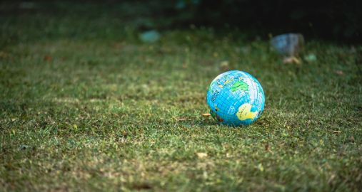 Ecology Internship Abroad