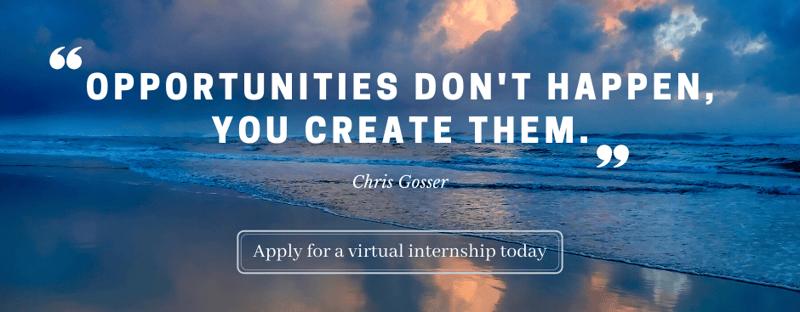 Apply for a virtual internship today