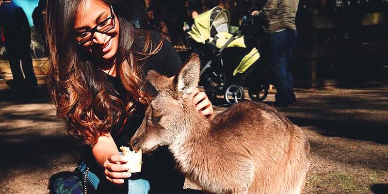 Katie Hunsberger, Sydney, intern, kangaroo