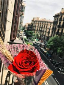 Sant Jordi Day