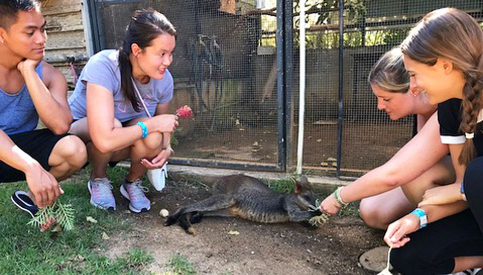 Sydney Interns at Zoo