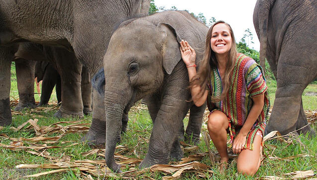 Woman petting a baby elephant in Thailand