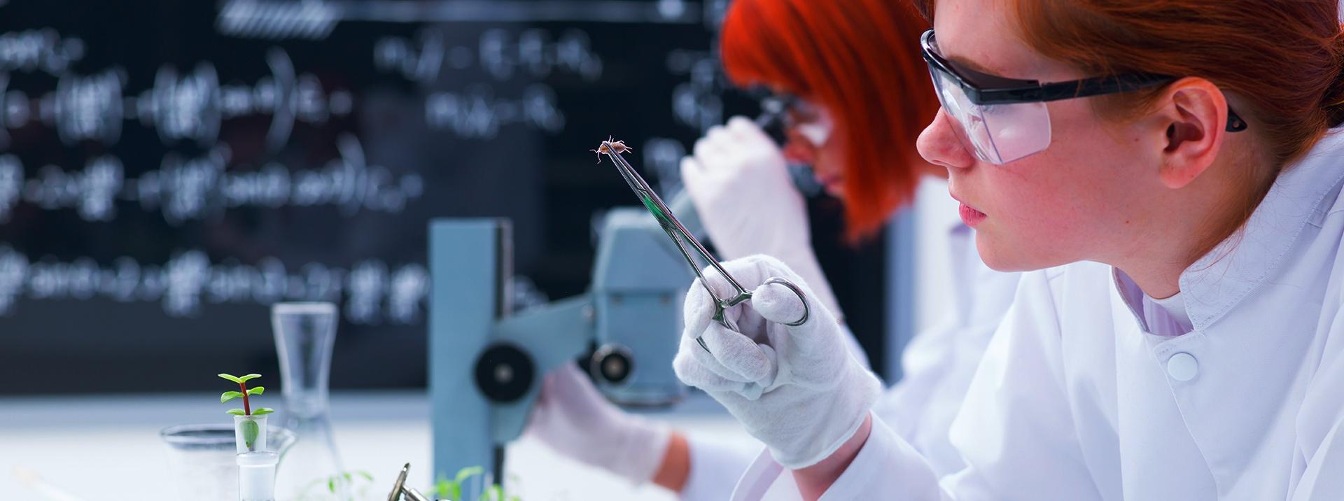 Environmental Science Internships