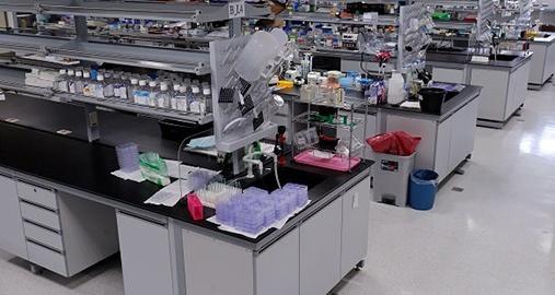 International Group of Laboratories