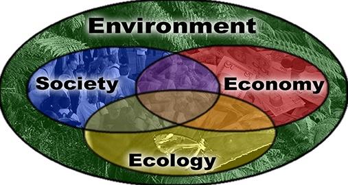 Environmental Advocacy