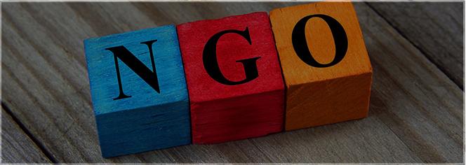 NGO / Non Profit Internships