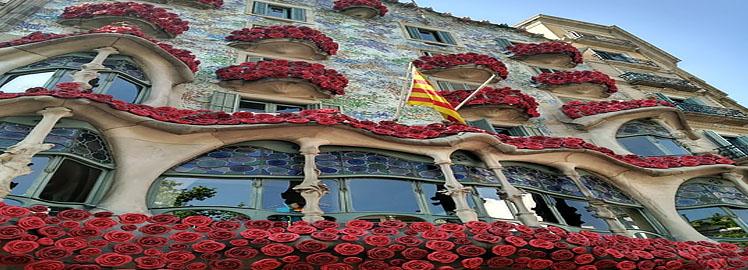barcelona roses.jpg